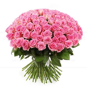 101 Pink Rose Bouquet