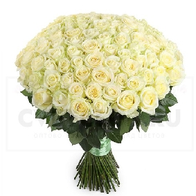 101 White Rose Bouquet